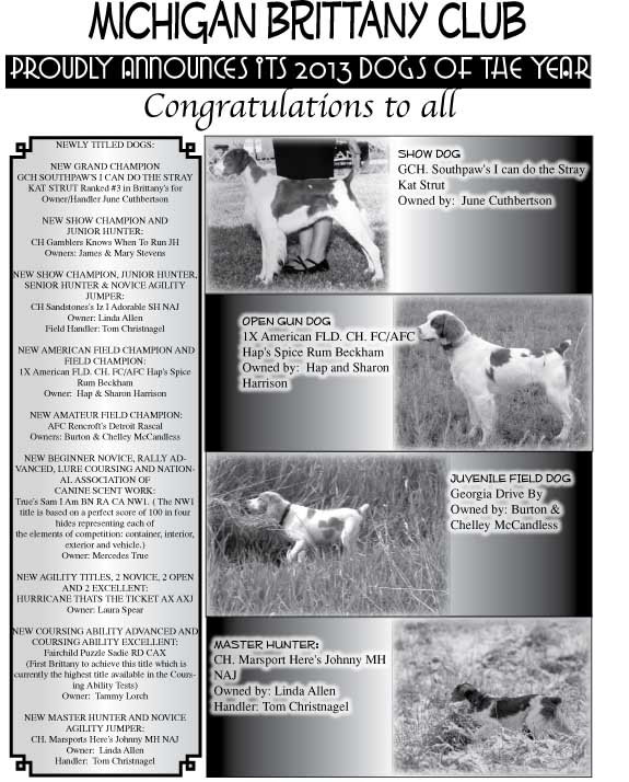 Michigan Brittany Club Dogs of the Year